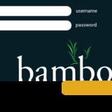 Bamboo login box